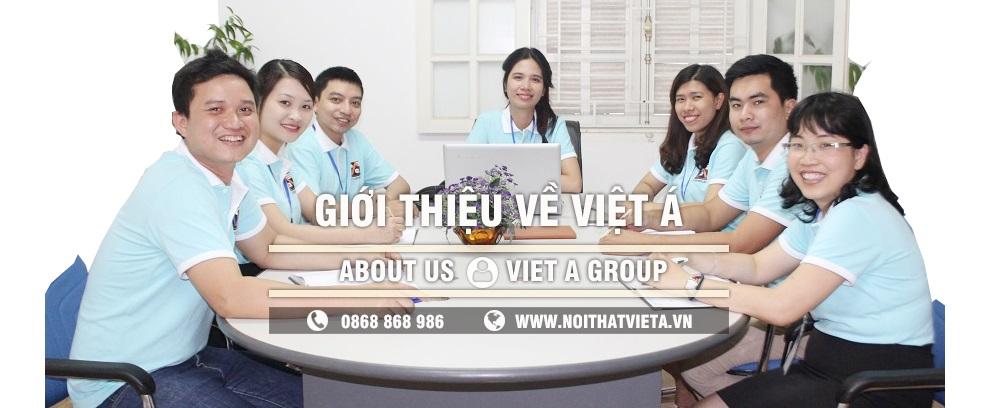 Giới thiệu về Việt Á Group