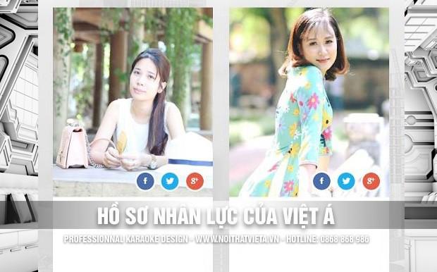 Hồ sơ nhân lực của Việt Á Group